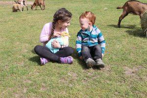 kids petting an animal